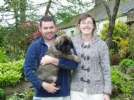 ANDREW & AMANDA COLLECTING ANGUS 07.05.2012