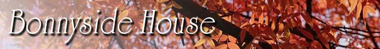 Bonnyside House