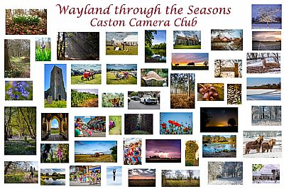 wayland through the seasons by caston camera club, photography