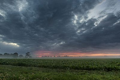 misty sunset over the fields  - with caston camera club