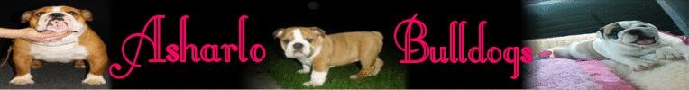 Asharlo Bulldogs