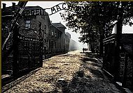 Auschwitz never to be forgotten