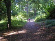 Armadale Woods
