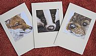 Greetings Cards (Pack of Three)