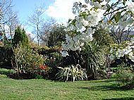 Gardens Behind House