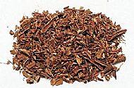 Bayberry Bark powder 1oz (Myrica cerifera)