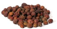 Hawthorn Berries whole 1oz (Crataegus laevigata)