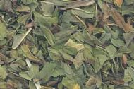 Peppermint Leaf cut .5oz (Mentha piperita)