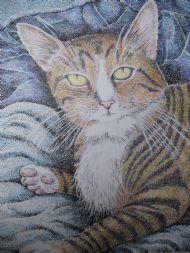 Paulas cat