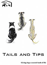 Tips and Tails