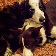 Meg and Poppy