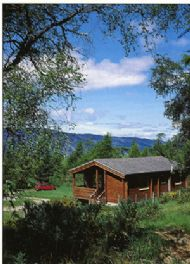 loch ness log cabins