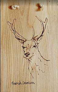 Stag Pyrography