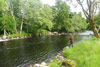 novar fishings, river alness, beat 3, ace pool thumbnail