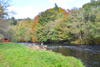 novar fishings, river alness, beat 3, stones pool thumbnail