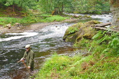 salmon fishing on the novar fishings, river alness or river averon, ross-shire