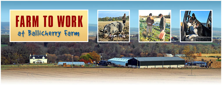Farm to Work
