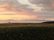 Herbusta Sunset