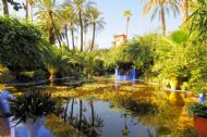 Jardin des Majorelle
