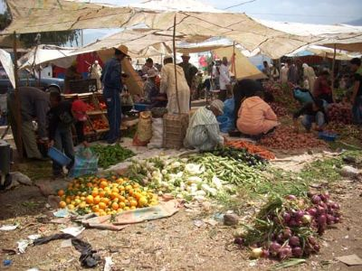berber markets trek