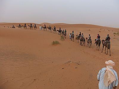 sahara tour
