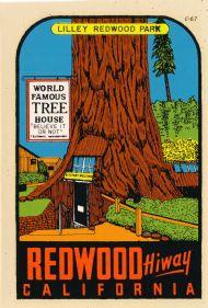 Redwood Hiway