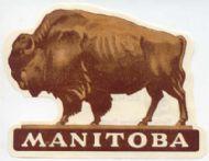 Bufallo Manitoba