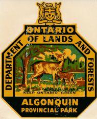 Ontario Algonuin Provincial Park