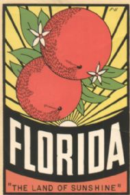 State Map Florida, Land of Sunshine + 2 oranges