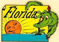 Florida, Alligator in the Sunshine