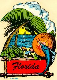 Florida, Palmtree and Orange