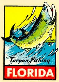 Florida, Tarpon Fishing
