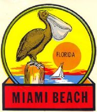 Miami Beach, Pelican
