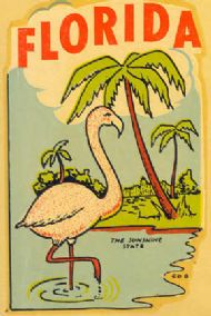 Flamingo, the Sunshine State