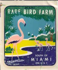 Rare Bird Farm