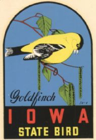 Goldfinch, State Bird