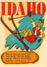 Falling skier