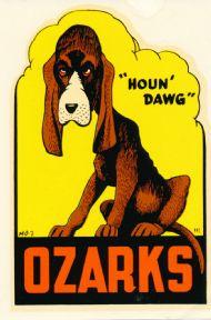 Ozarks Houn' Dawg