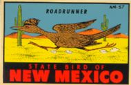 Roadrunner, State Bird of N.M.
