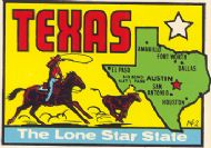 State Map Lone Star State, green state