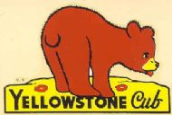 Yellowstone Cub