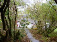 The Woodland Garden at Heronfield