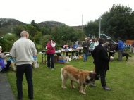 Assynt Crofts Dog Show 2011 1