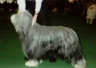 Barney March 2003