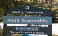 forestry car park