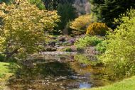 The beautiful pond gardens at Clan Donald Skye, Armadale