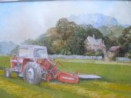 Massey Fergusson 550 mowing
