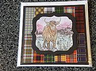 Highland cow on tartan