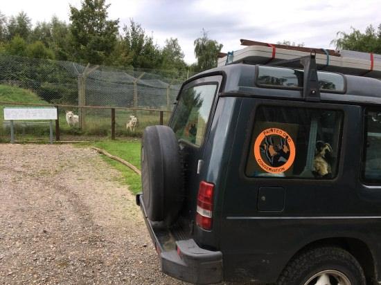 pdc-uk visits uk wolf conservation trust