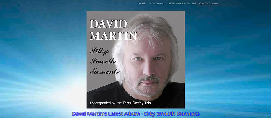 david martin singer & songwriter